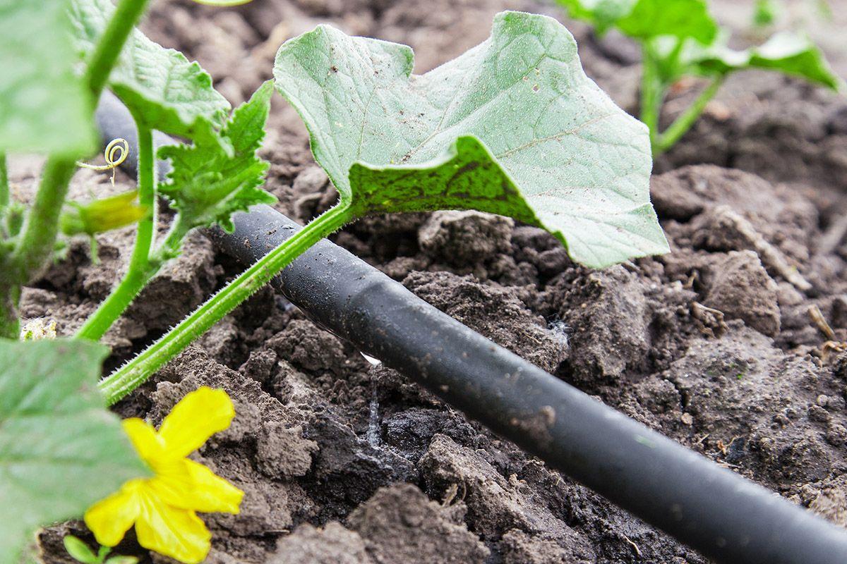 impianto-irrigazione-tubo