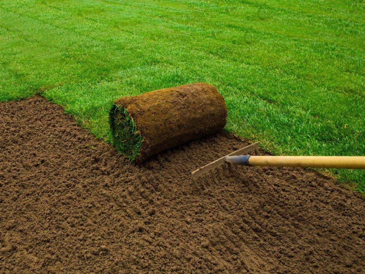 tappeto-erboso-giardino-posatura