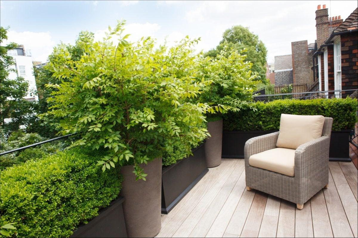 Giardino sul terrazzo - Terrazzo giardino ...