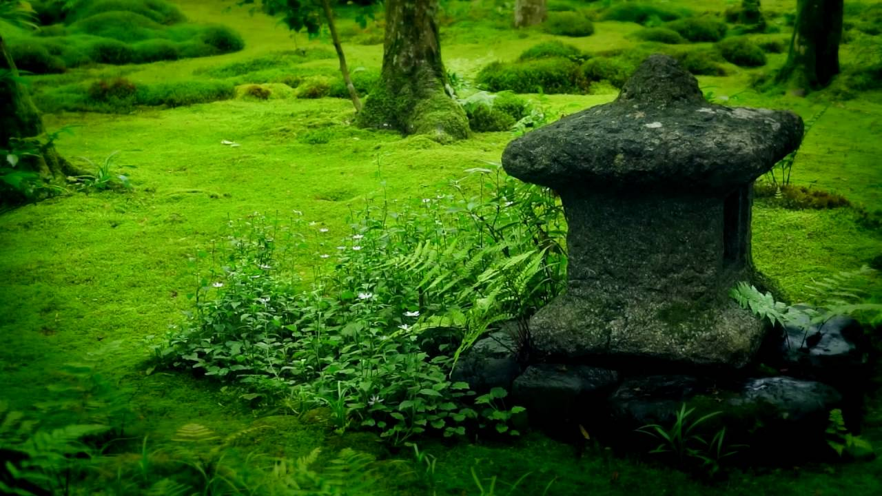Perfect with immagini giardini zen - Giardini zen immagini ...