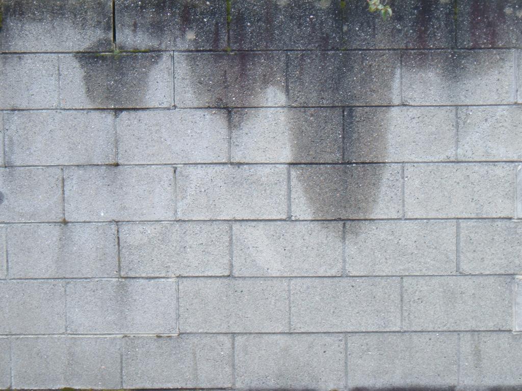 Muro Bagnato Cosa Fare infiltrazioni d'acqua casa: cause e rimedi