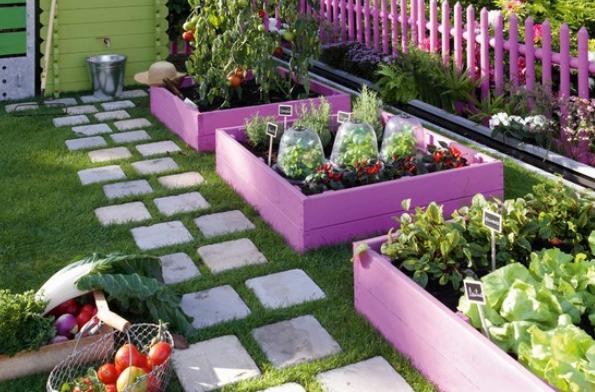 Come fare un orto in giardino