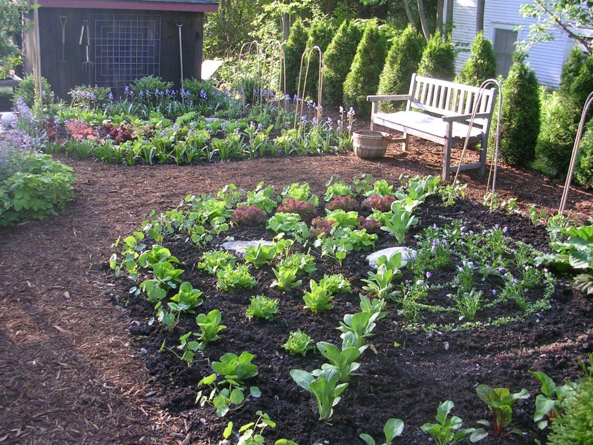 Come Recintare Un Giardino come fare un orto in giardino