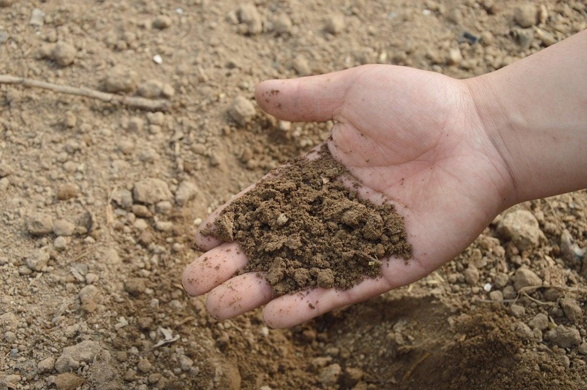 orto-in-giardino-preparazione-terreno