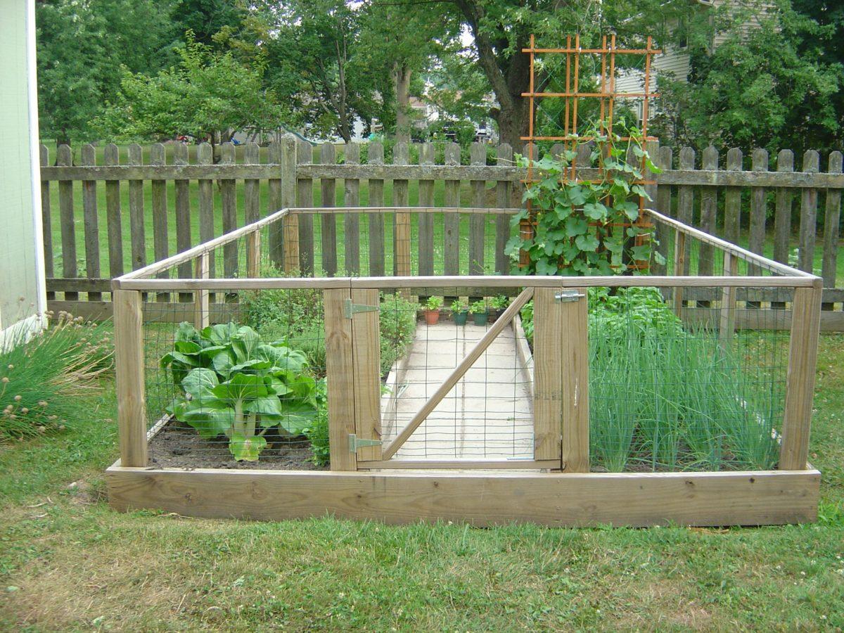 orto-in-giardino-recinzione-animali