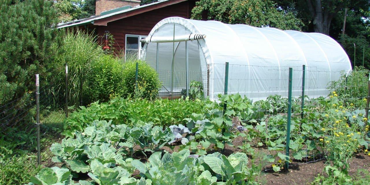orto-in-giardino-serra