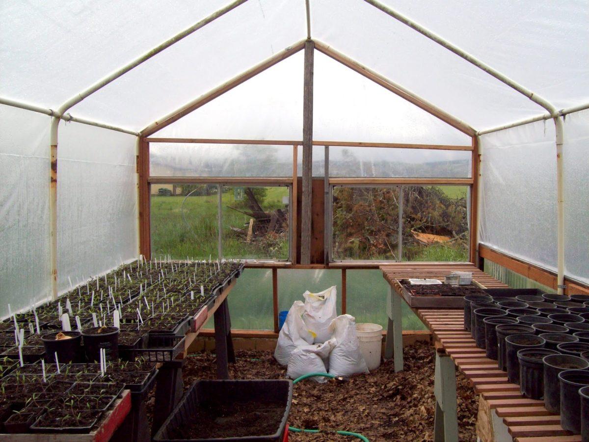 serra-giardino-interno-coltivazione