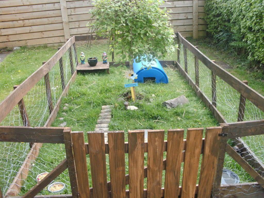 recinzione-giardino-pollaio