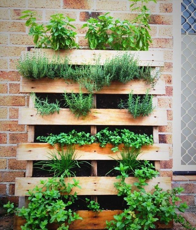 terrazzo-piccolo-piante-3