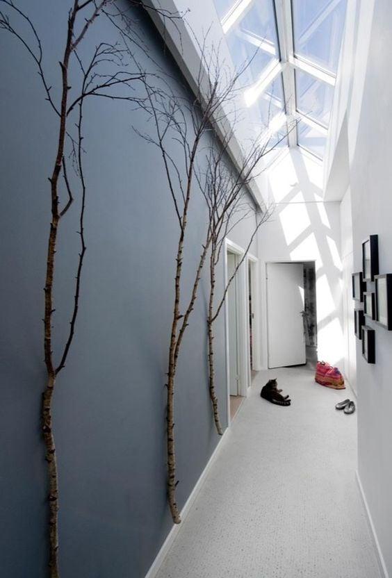 abbellire-corridoio-piante