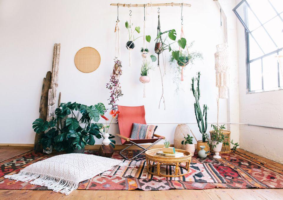 abbellire-stanza-piante-tappeti