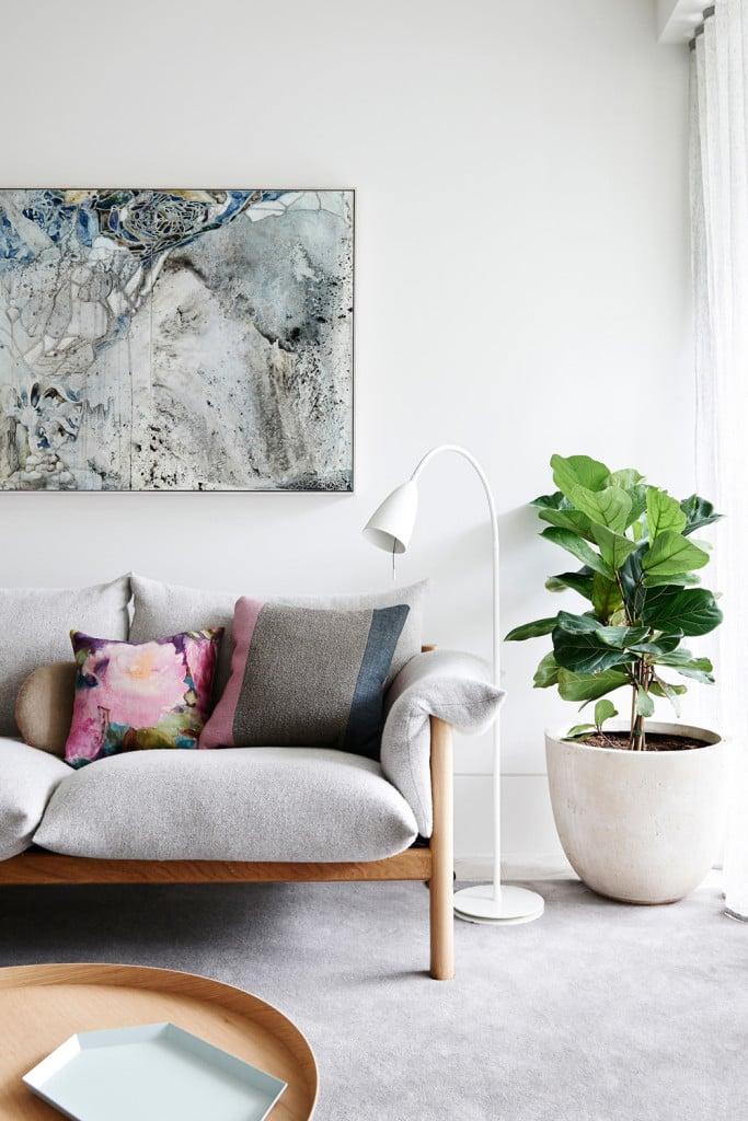 piante-da-soggiorno-salotto