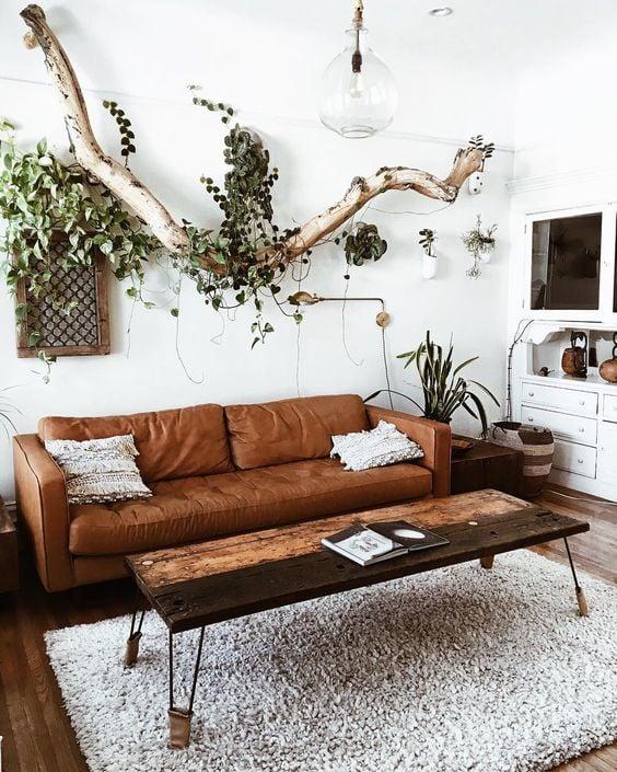 piante-soggiorno-arredare