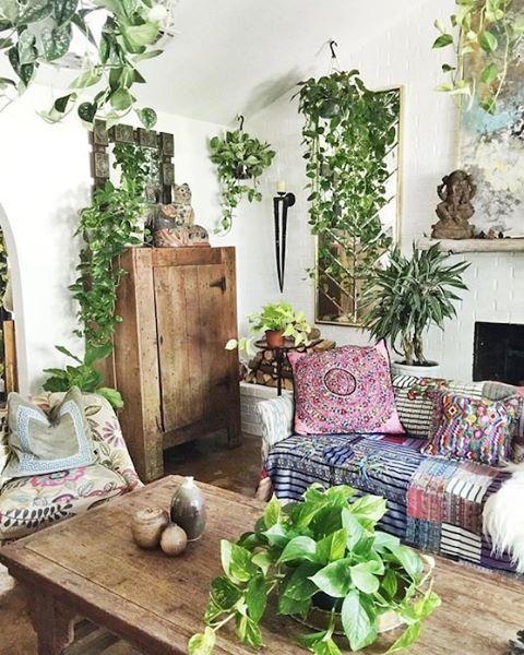 piante-soggiorno