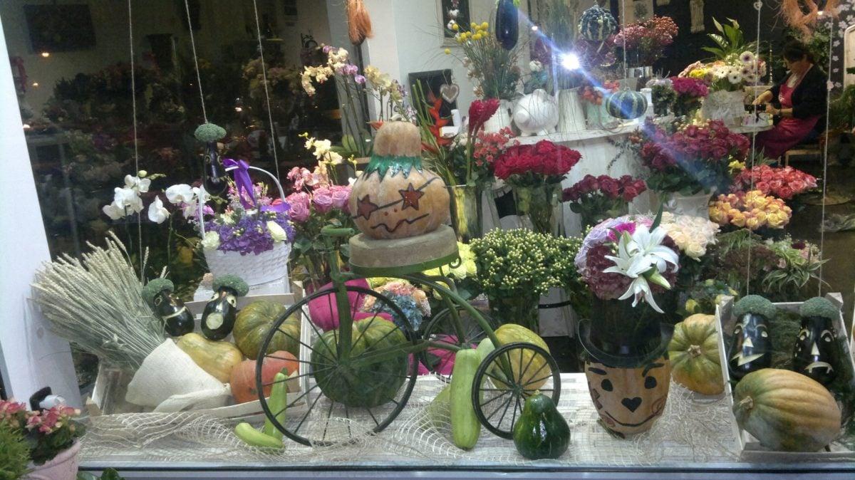 vetrina-negozio-halloween-18