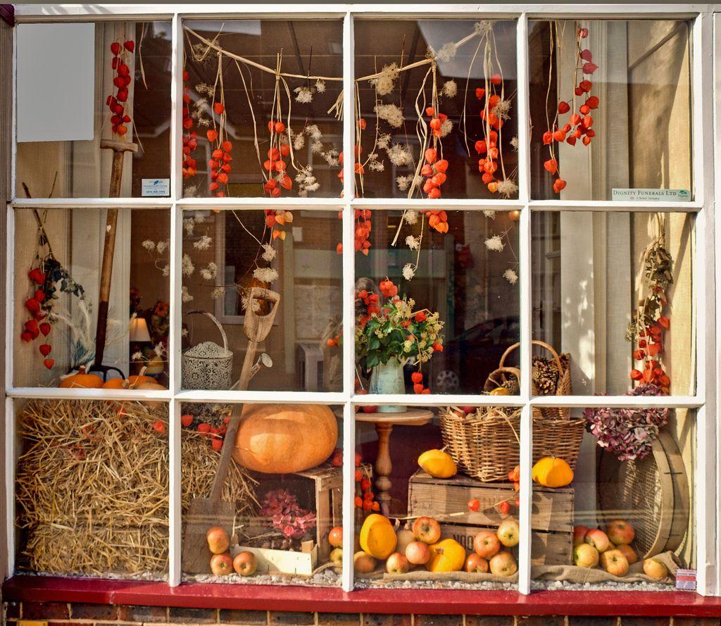 vetrina-negozio-halloween-2