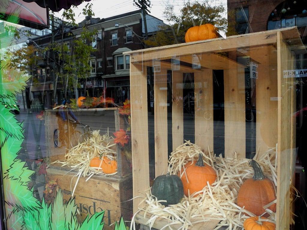 0421efd18ab2 vetrina-negozio-halloween-7
