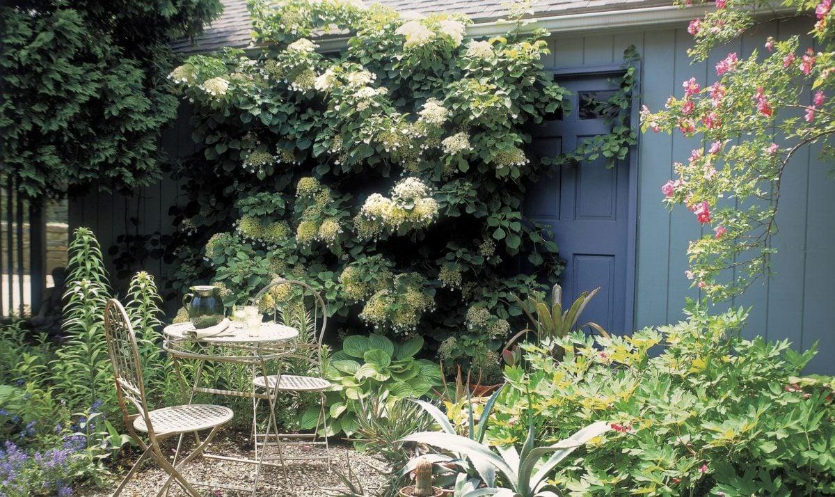 Favoloso 10 idee fantastiche per arredare piccolo giardino da sogno CH43