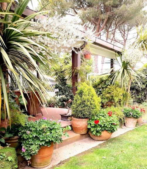 come-disporre-piante-giardino-angoli-fioriti