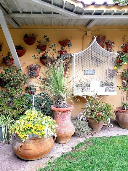 come-disporre-piante-giardino-angoli-speciali