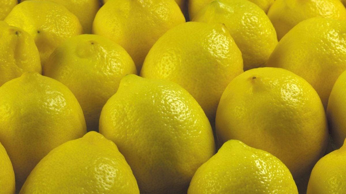 giallo-limone-frutto