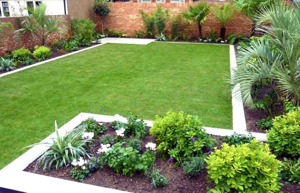 piante giardino piccolo rettangolare prato