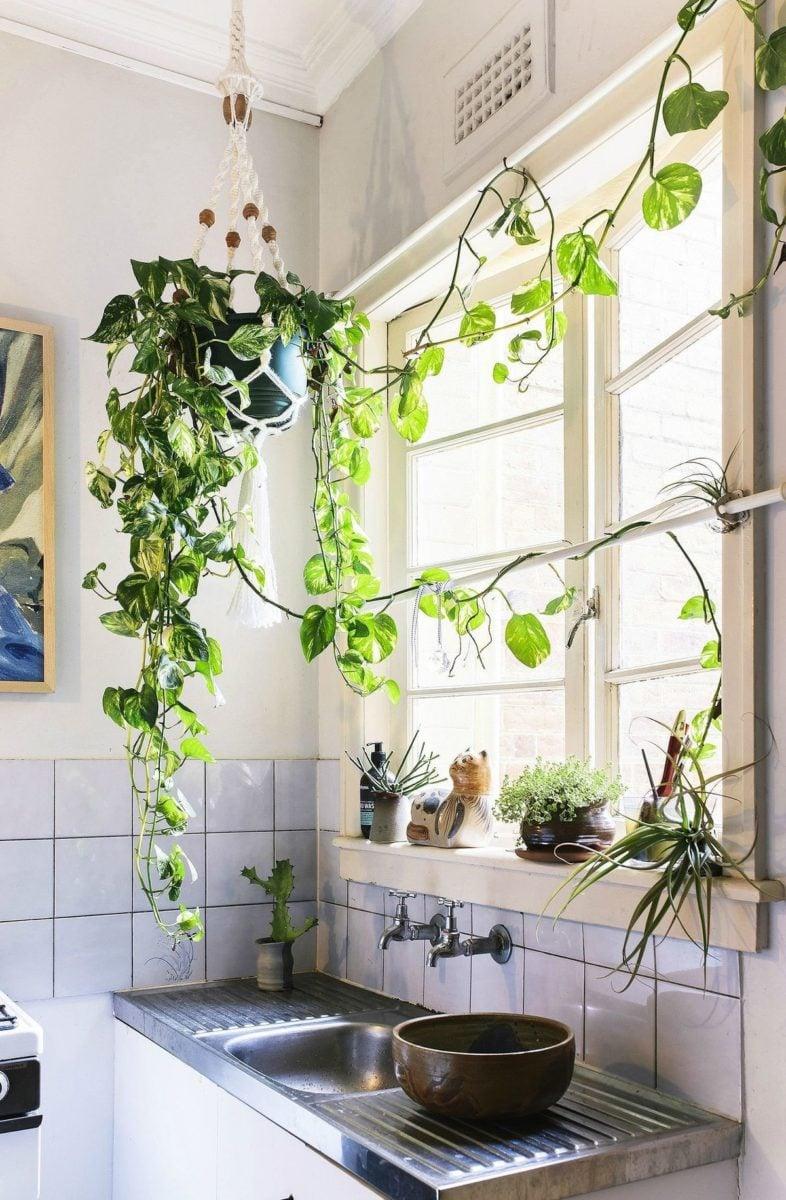 stile-urban-jungle-cucina-2