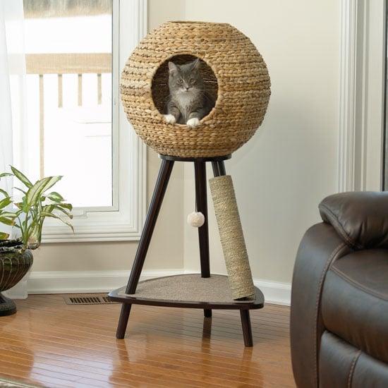 Arredamento-casa-cani-gatti-cuccia-tiragraffi