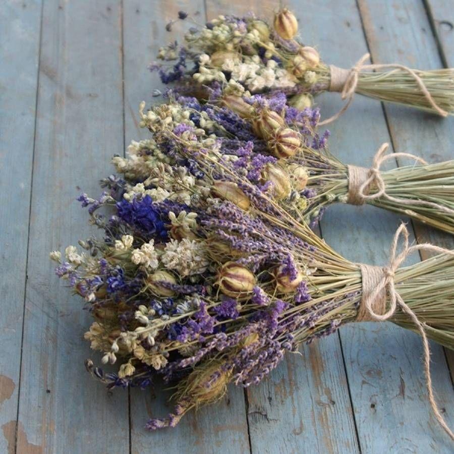 fiori-provenza