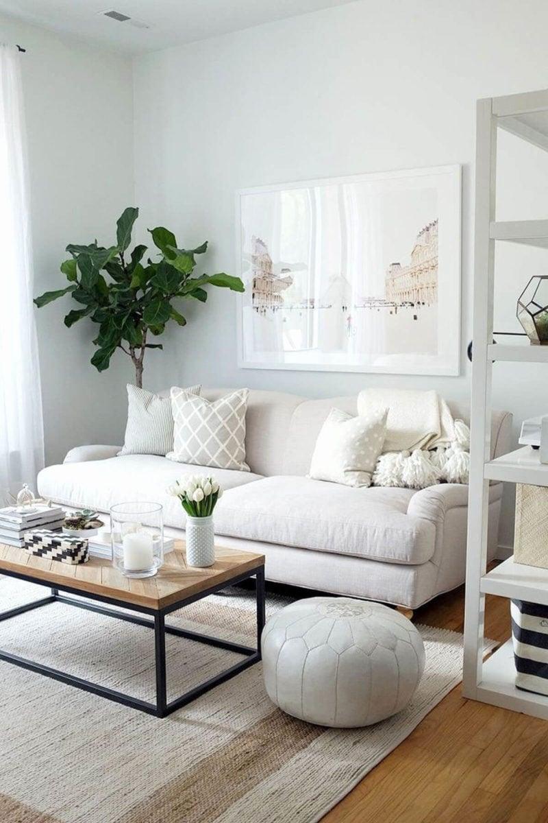 abbellire-soggiorno-piccolo-piante