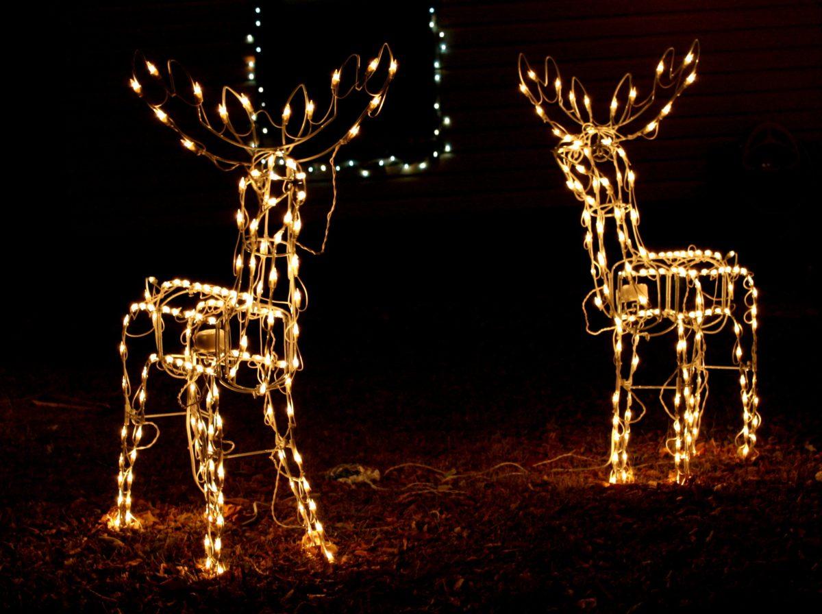 Come Creare Una Renna Luminosa decorazioni natalizie: come addobbare casa con le renne