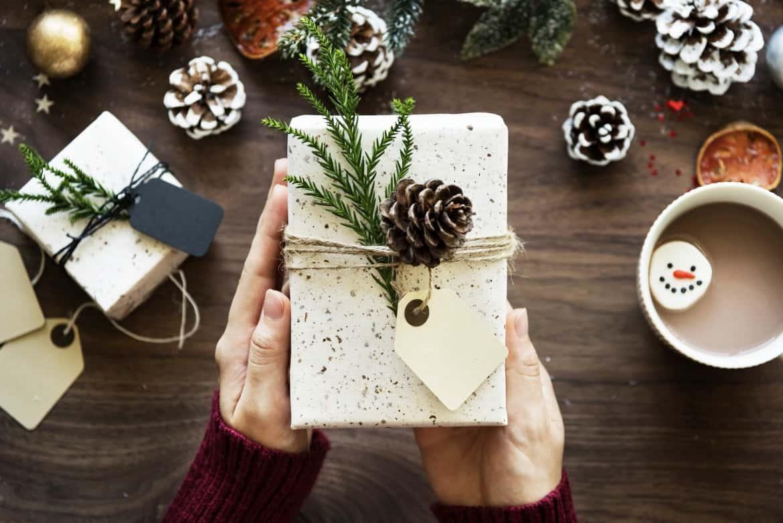 decorazioni-natalizie-pigne-fiocco-regalo