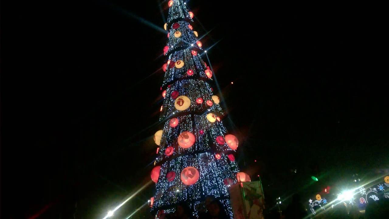 albero-natale-zocalo