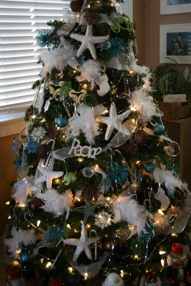 decorazioni-natalizie-coastal-varie