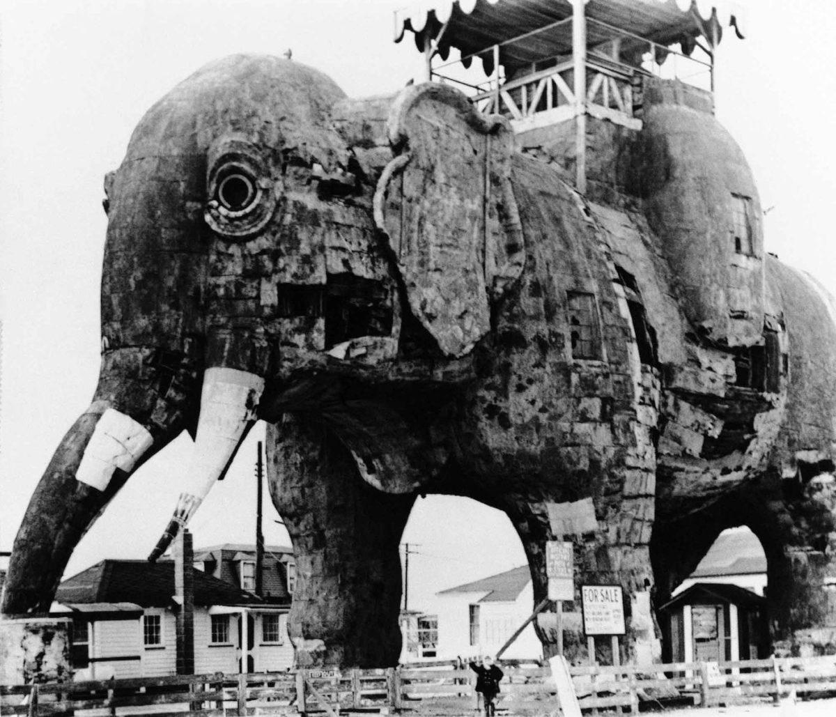 lucy-elephant-marcio