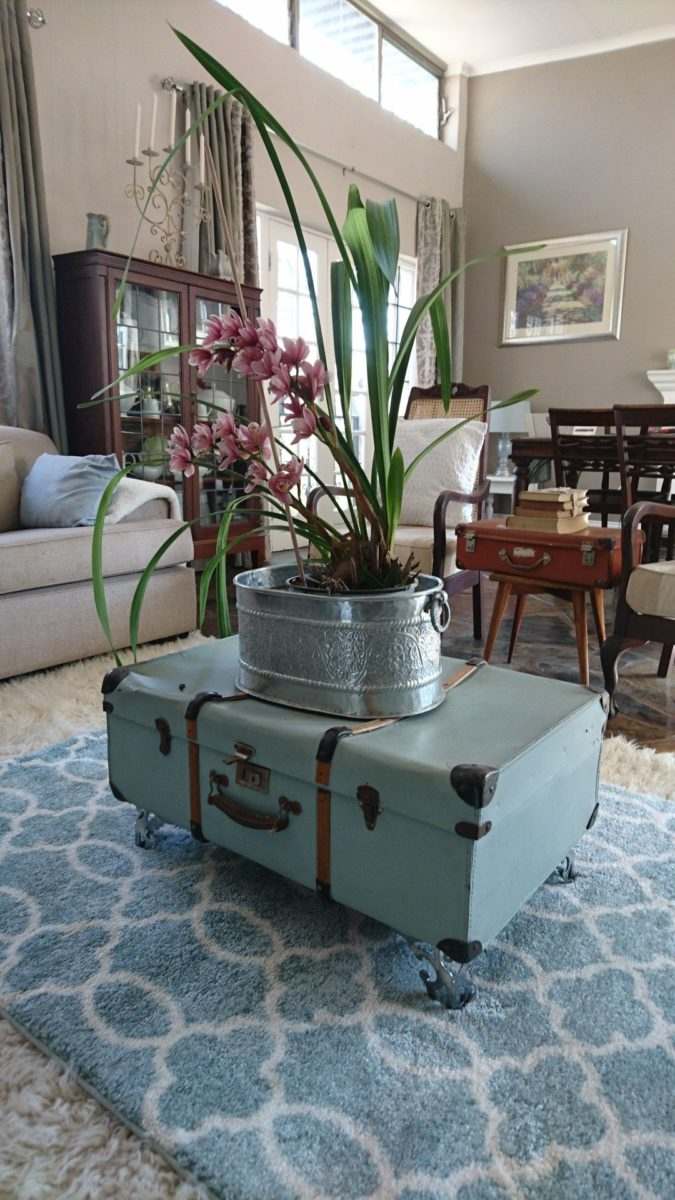 riciclare-valigia-portapianta