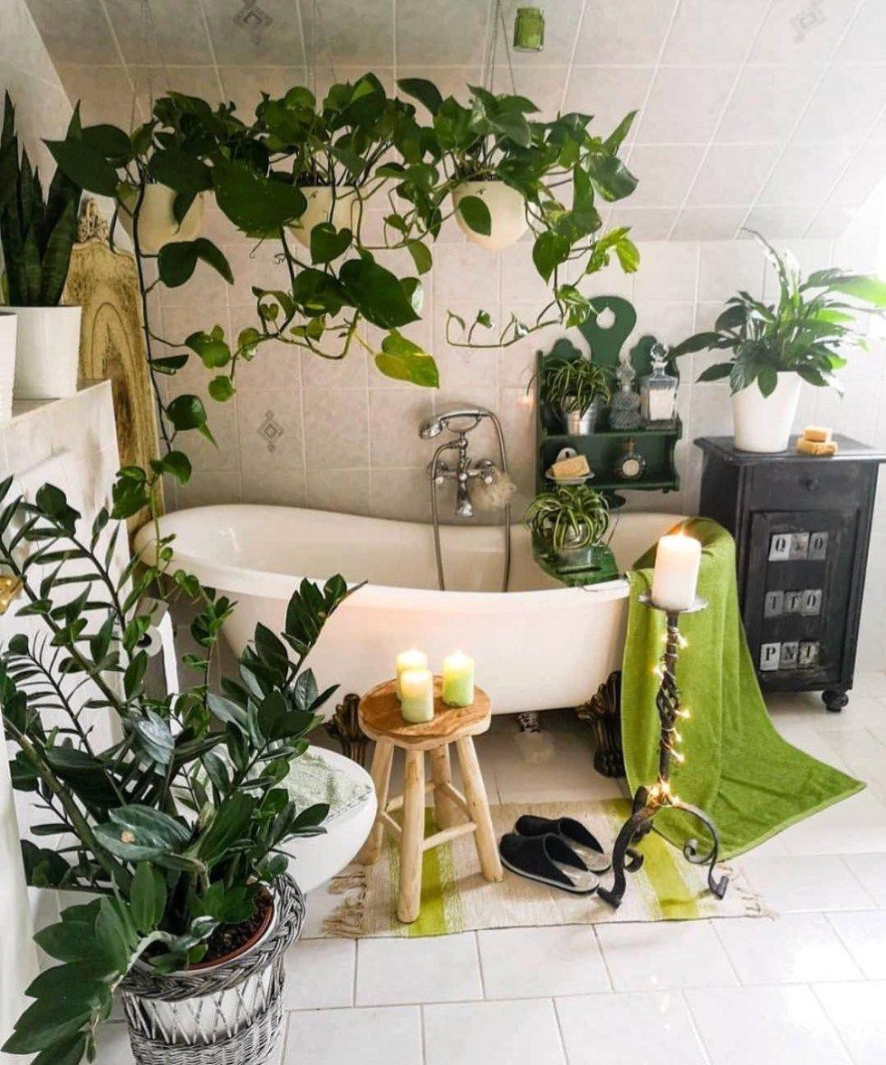 come-creare-giardino-in-casa-1