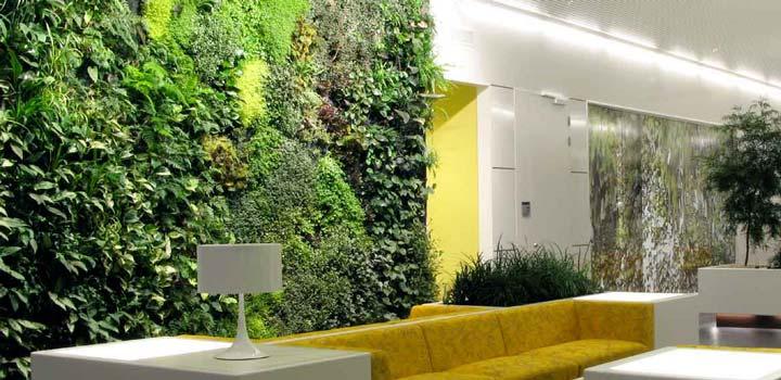 come-creare-giardino-in-casa-15