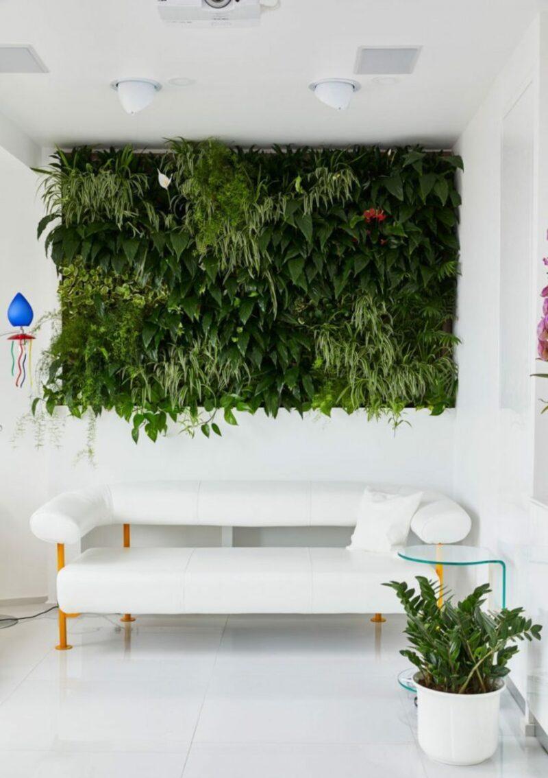 Realizzare una parete giardino in casa