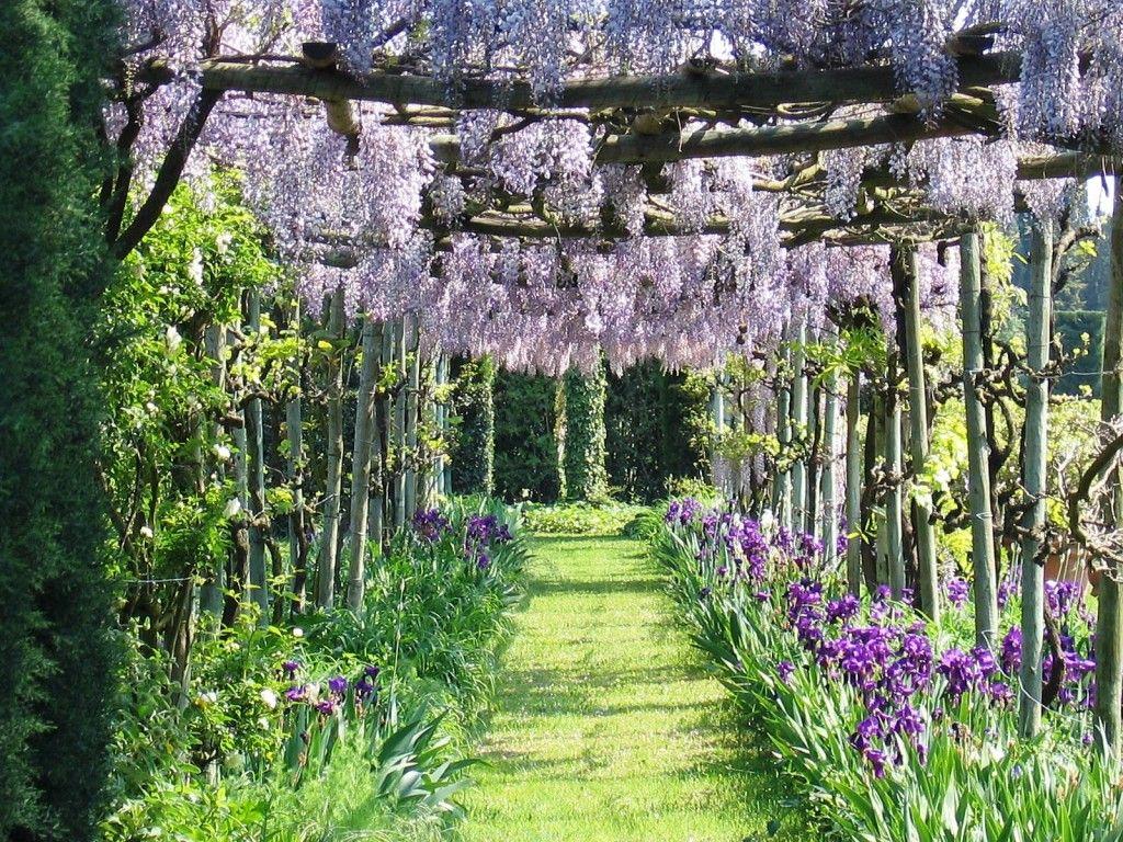arredare-giardino-stile-provenzale-2