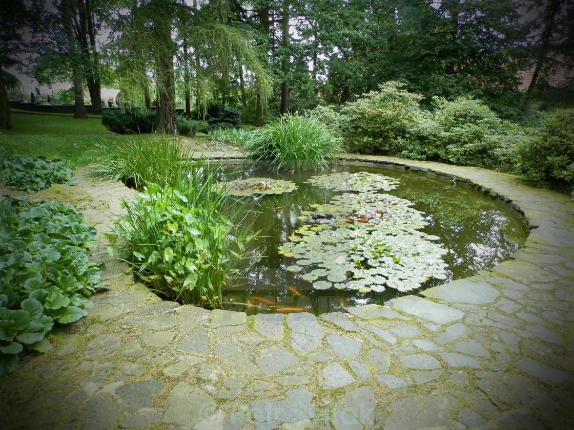 giardino-laghetto