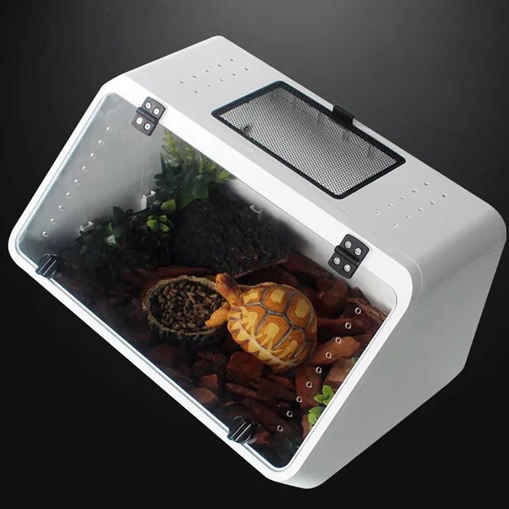 pulire-vasca-tartarughe-2