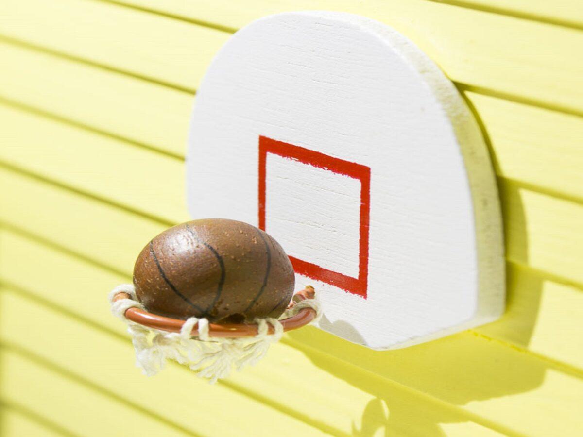 canestro-da-basket-in-giardino-6