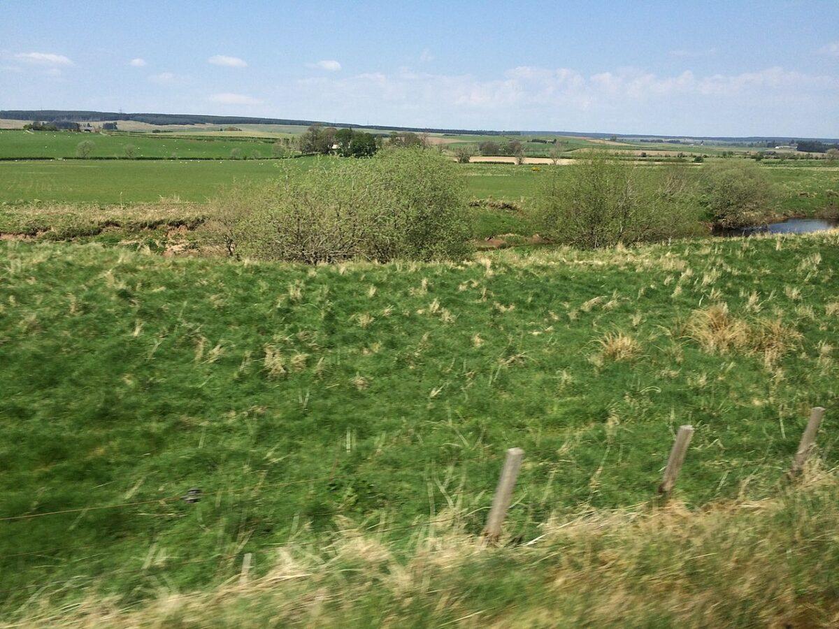 Idee per sfruttare al massimo un terreno di proprietà