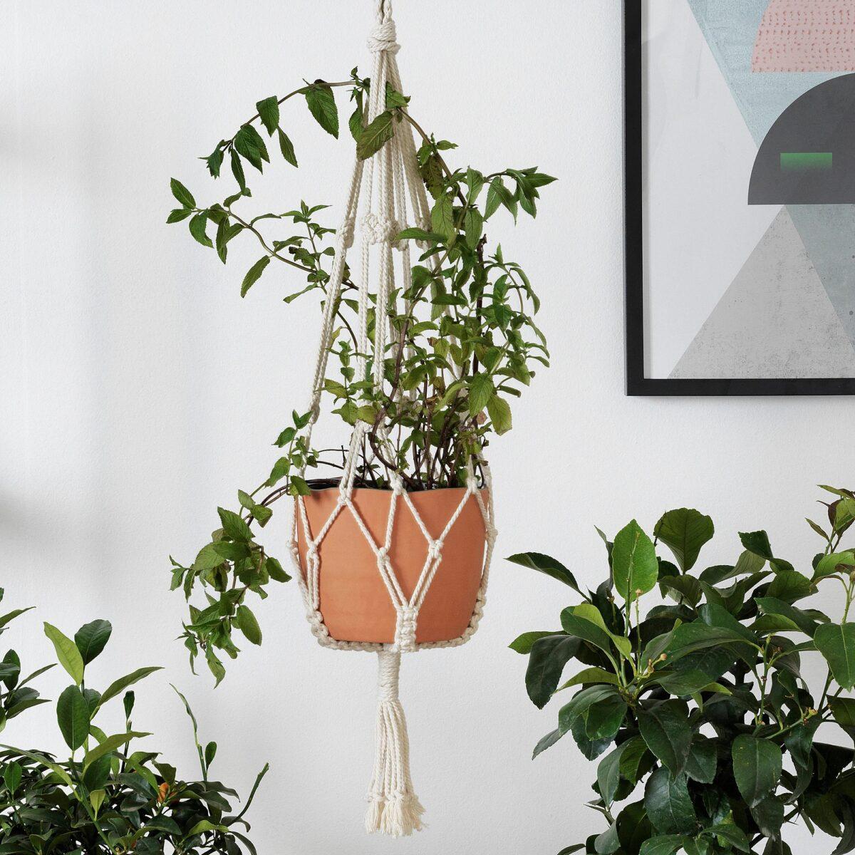 ikea-botanisk-accessorio-sospensione-portavasi-beige-fatto-a-mano