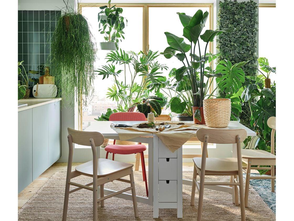 ikea-catalogo-2021-piante