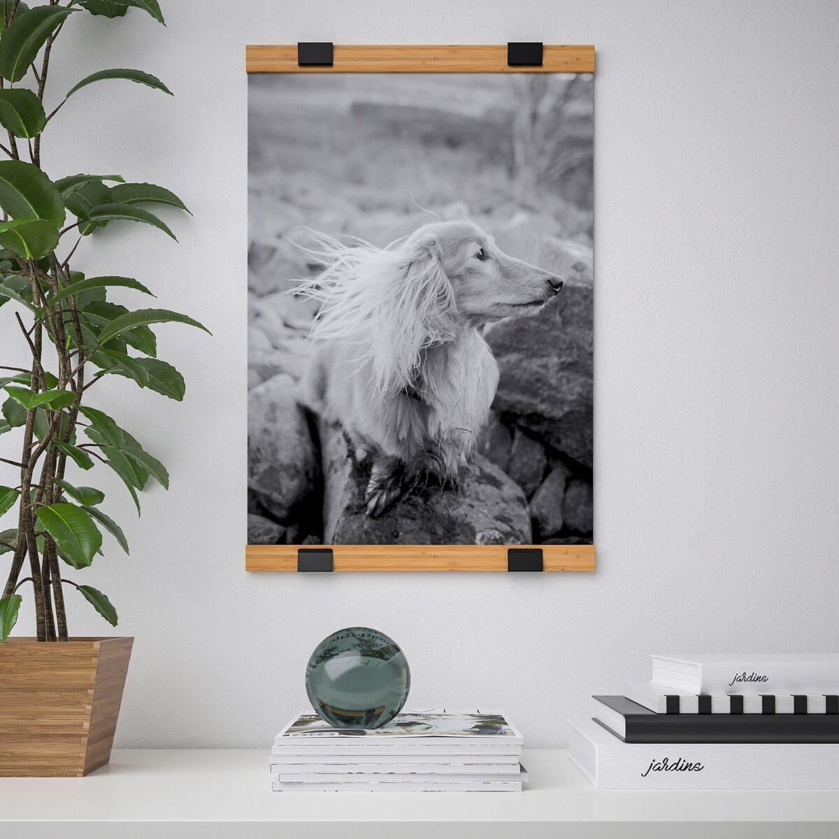 ikea-visbaeck-aste-porta-poster-bambu