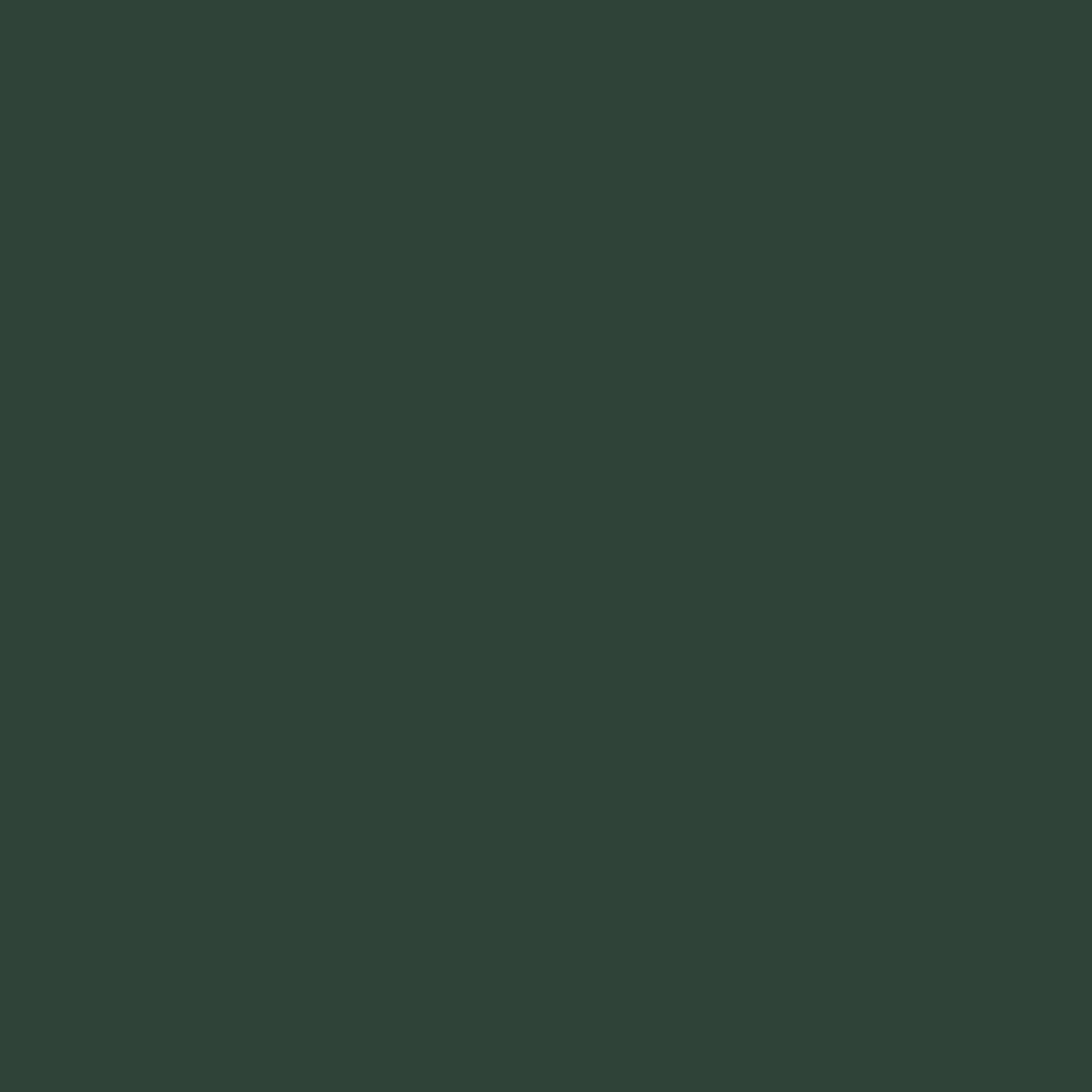 verde-muschio-per-arredare-casa-26