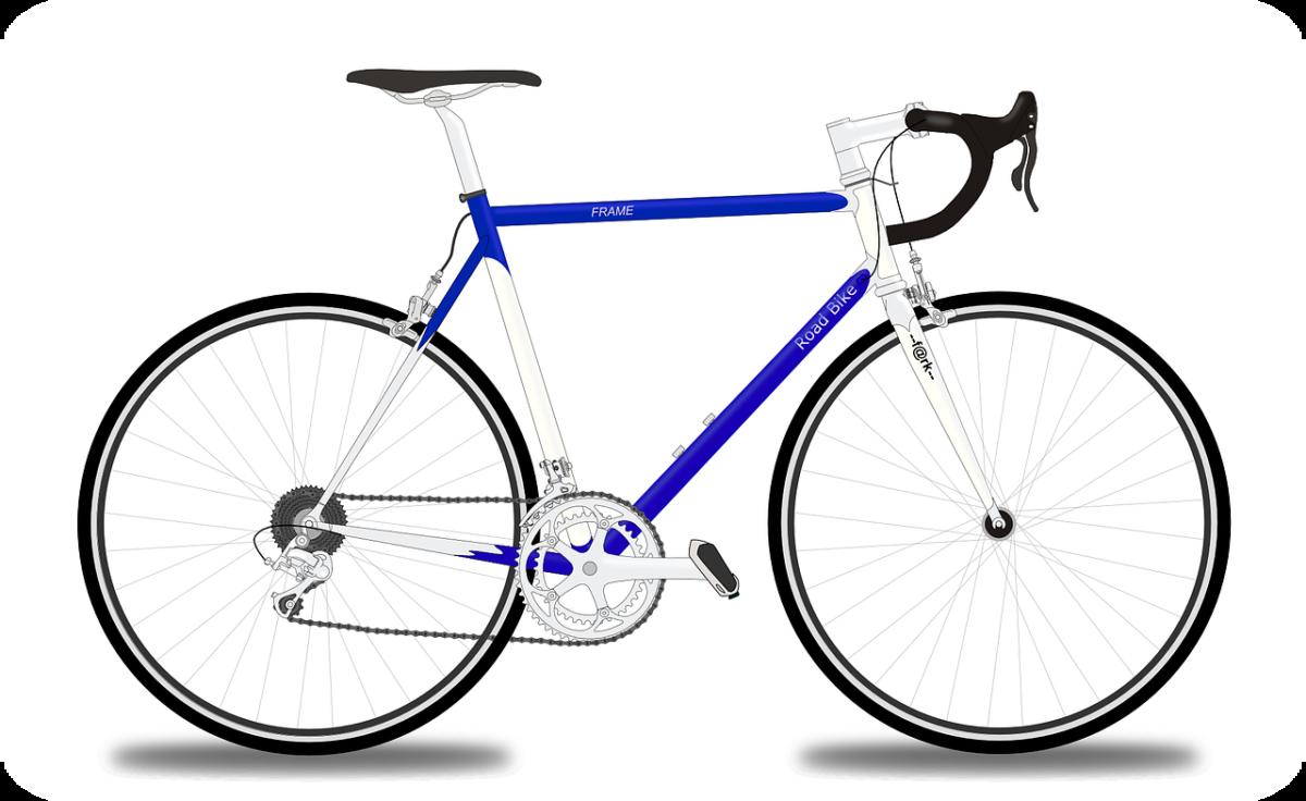 come-convervare-la-bici-in-cantina