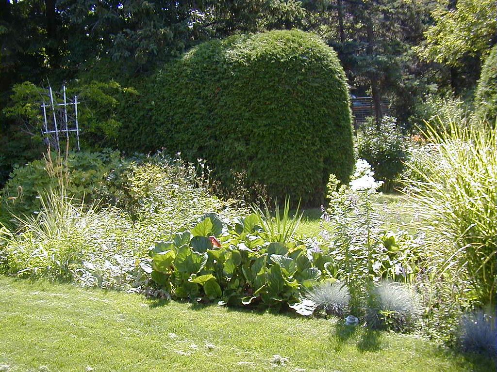 come-sistemare-giardino-1